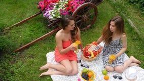 Le ragazze graziose hanno picnic dalla cima stock footage