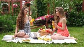 Le ragazze hanno un picnic e bevono il succo archivi video