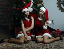Le ragazze piacevoli della neve celebra il nuovo anno Fotografia Stock Libera da Diritti