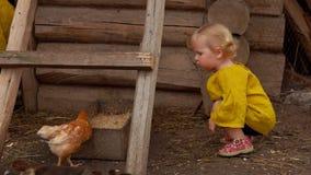 Le ragazze sveglie esaminano i giovani uccelli in una fattoria video d archivio