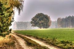 Le ramassage d'automne de couleurs HDR Image stock