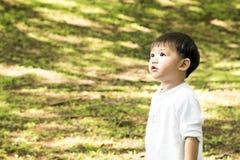Le rampement d'un an de beau bébé garçon, sourit et rit Photos stock
