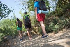 Le randonneur voyage dans la forêt avec un sac à dos le concept du voyage et de la hausse dans les endroits sauvages de la nature Images libres de droits