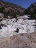 Le rapide infuriantesi di un fiume fresco della montagna fotografia stock