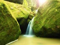 Le rapide sulla piccola torrente montano fra il basalto muscoso oscilla Acqua vaga che investe le pietre Immagine Stock Libera da Diritti