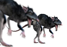 Le rat aiment des créatures Images stock