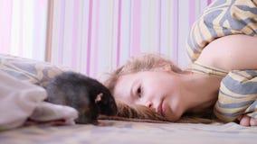 Le rat domestique marche sur la couverture Une adolescente se situe dans un lit et joue avec un rat clips vidéos
