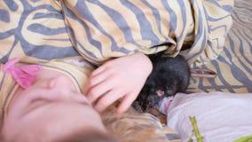Le rat domestique marche sur la couverture Une adolescente se situe dans un lit et joue avec un rat banque de vidéos