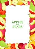 Le rectangle vertical a coloré le cadre composé de fruit de poires de pommes Delicious Illustration de carte de vecteur Pomme de  Image stock
