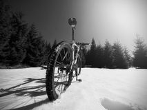 Le recyclage en montagnes neigeuses d'hiver sur le grand pneu roule le vélo de montagne Photographie stock