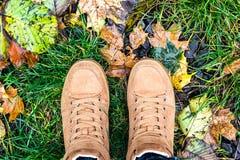 Le regard en bas des chaussures de brun de paires tenant l'érable jaune humide de chute au sol laisse le mode de vie extérieur Fa Photos libres de droits