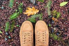 Le regard en bas des chaussures de brun de paires tenant l'érable jaune humide de chute au sol laisse le mode de vie extérieur Fa Photographie stock
