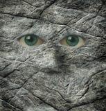 Le regard fixe de stoney d'un visage de roche Images libres de droits