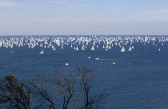 Le regatta de Barcolana Image stock