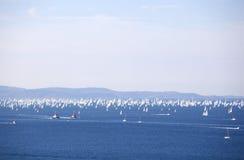 Le regatta de Barcolana Photo libre de droits