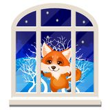 Le renard de sourire gai mignon regarde par la fenêtre d'isolement sur un fond blanc Croquis de Noël de fête illustration libre de droits