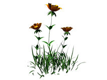 le rendu 3d du buisson de fleur d'isolement sur le blanc peut être employé pour les FO Photographie stock libre de droits