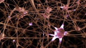 le rendu 3D d'un réseau des cellules de neurone et des synapses dans le cerveau par lequel des impulsions électriques et décharge illustration stock