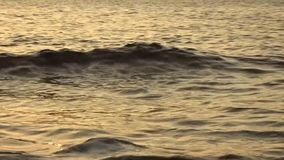 Le renega à Oropesa clips vidéos