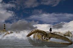 Le repère II de chanson de baleines Image libre de droits