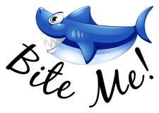 Le requin bleu et l'expression me mordent Photos libres de droits
