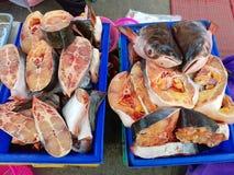 Le requin iridescent coupé s'est vendu sur le marché en plein air de marche thaïlandais Photos libres de droits