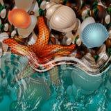 Le ressac de côte d'océan Cailloux humides Ondes de mer Pebble Beach avec les coquillages et l'étoile de mer illustration stock