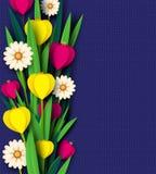 Le ressort de coupe de papier fleurit la tulipe et les camomilles Calibre pour la carte de voeux, fond de vacances Style de Paper illustration stock