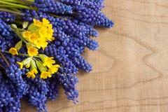 Le ressort de Muscari et de primevère fleurit sur un fond en bois, avec l'espace de copie Photos stock