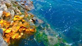 Le ressort de Qingdao image libre de droits