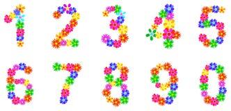 Le ressort fleurit des nombres Photos stock