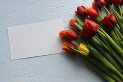 Le ressort fleurit des tulipes sur une table texturisée en pierre 8 mars, jour international du ` s de femmes, jour du ` s de mèr Image stock