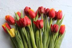 Le ressort fleurit des tulipes sur une table texturisée en pierre 8 mars, jour international du ` s de femmes, jour du ` s de mèr Image libre de droits