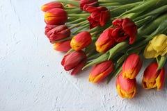 Le ressort fleurit des tulipes sur une table texturisée en pierre 8 mars, jour international du ` s de femmes, jour du ` s de mèr Images stock