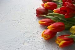 Le ressort fleurit des tulipes sur une table texturisée en pierre 8 mars, jour international du ` s de femmes, jour du ` s de mèr Photo libre de droits