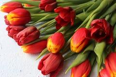 Le ressort fleurit des tulipes sur une table texturisée en pierre 8 mars, jour international du ` s de femmes, jour du ` s de mèr Photographie stock libre de droits