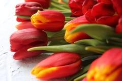 Le ressort fleurit des tulipes sur une table texturisée en pierre 8 mars, jour international du ` s de femmes, jour du ` s de mèr Photos stock
