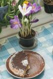 Le ressort fleurit les crocus et le gâteau pourpres sur une table par la fenêtre Images stock