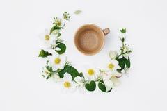 Le ressort fleurit sous forme de croissant et belle tasse dessus Photos stock