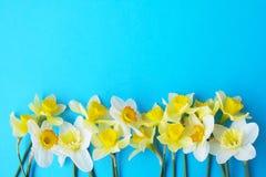 Le ressort minimalistic tendre fleurit la composition sur la surface de texture Belle décoration féminine d'usine pour la carte d Photographie stock