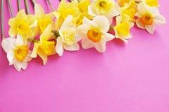 Le ressort minimalistic tendre fleurit la composition sur la surface de texture Belle décoration féminine d'usine pour la carte d Image stock