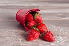 Le ressort porte des fruits, des fraises dans un seau en aluminium Photographie stock libre de droits