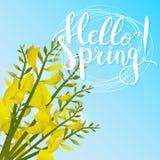 Le ressort tiré par la main d'expression de lettrage de typographie bonjour sur le fond vert avec la floraison fleurit Photos libres de droits