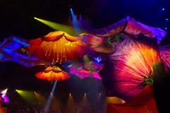 Le Reve Abstrakt kwiat zdjęcia stock