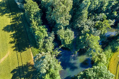 Le Rhin Tortu,史特拉斯堡南部的-盛大Est,法国一条小河 免版税库存照片