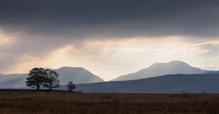 Le Rhinogs, Pays de Galles Photo stock