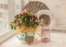Le rhododendron d'azalée dans le pot de vintage avec des autocollants de décor appareillent o Image libre de droits
