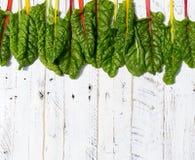 Le ricette piane di dieta sana della bietola svizzera dell'arcobaleno di disposizione deridono su bianco Fotografie Stock Libere da Diritti
