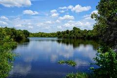 Le riflessioni nel fiume Immagini Stock