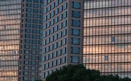 Le riflessioni sulle finestre del tramonto riscaldano la luce nei modelli di grande e dell'orizzonte in grattacieli, edificio per fotografia stock libera da diritti